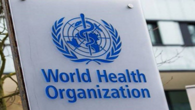 """Photo of """"المدينة المنورة"""" مدينة صحية بشهادة منظمة الصحة العالمية"""